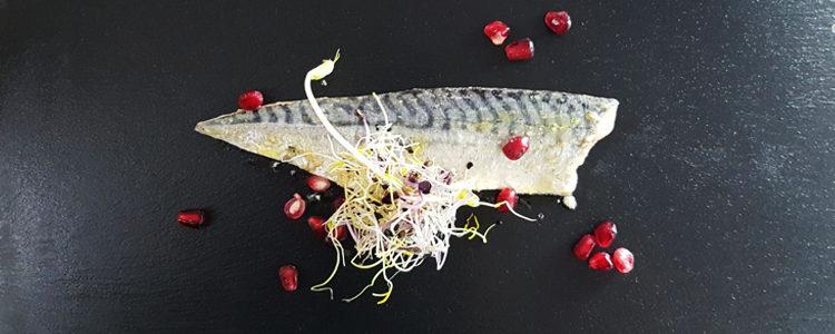 Filetto di sgombro leggermente affumicato,insalatina di germogli e melograno