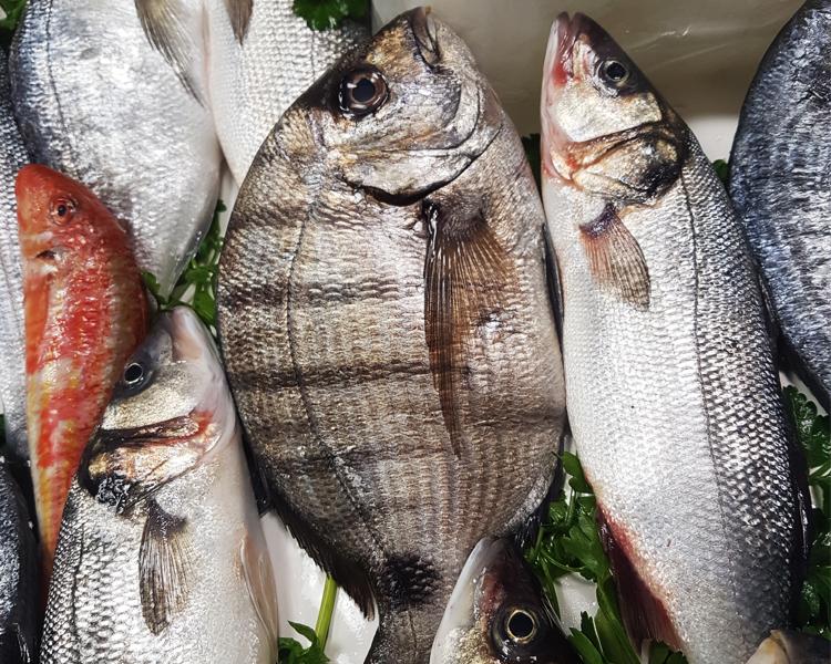 come riconoscere il pesce fresco 3