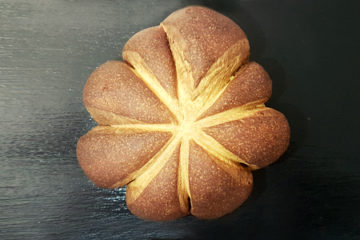 Pan di Zucca